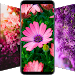 Download \ud83c\udf3a Flower Wallpapers - Colorful Flowers in HD & 4K 2.1.5 APK
