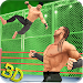 Download Tag Team Wrestling Superstars 2019: Hell In Cell 1.0.8 APK