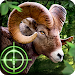 Download Wild Hunter 3D 1.0.8 APK